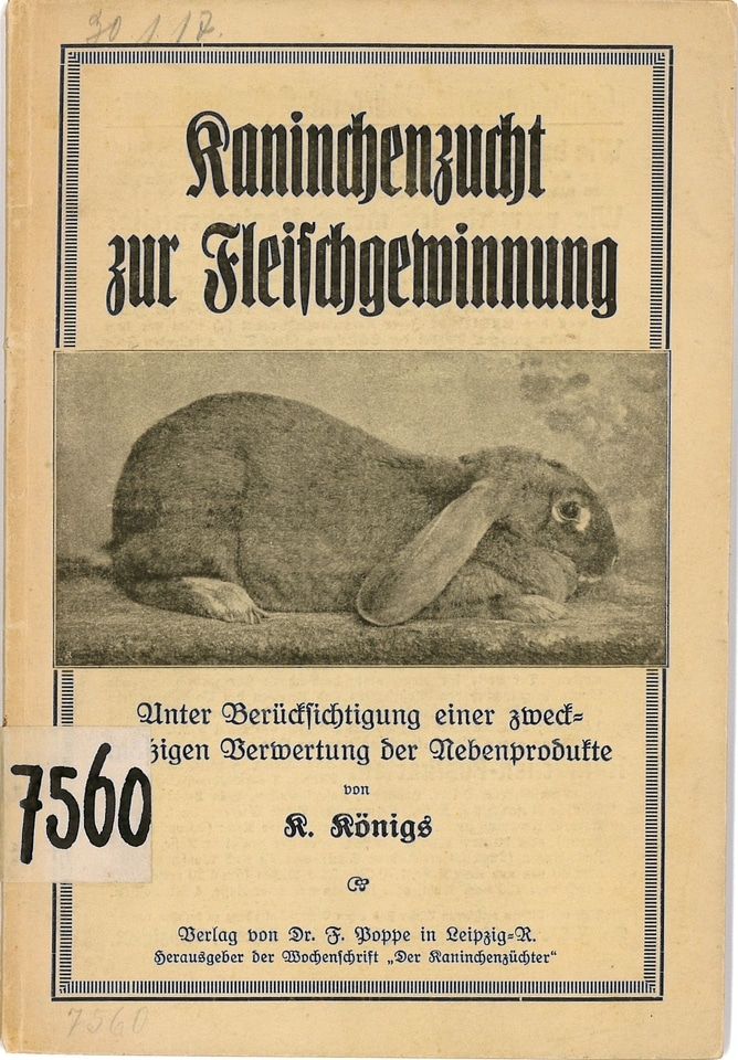 BfZ7560-Kaninchen.jpg