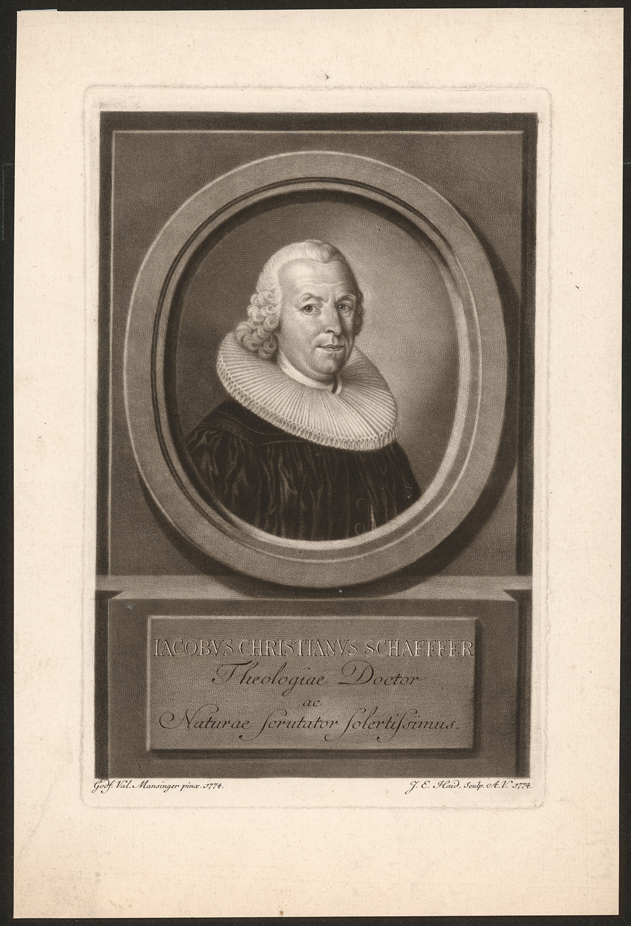 Porträt Jacob Christian Schaeffer (1718—1790)