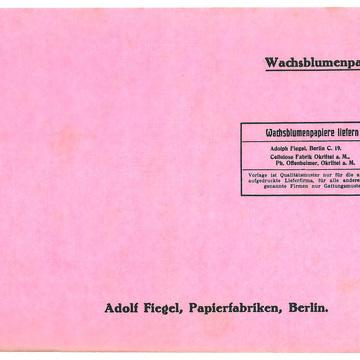 13_05_Musterbuch_1928_293_Wachsblumenpapier_stripped.jpg