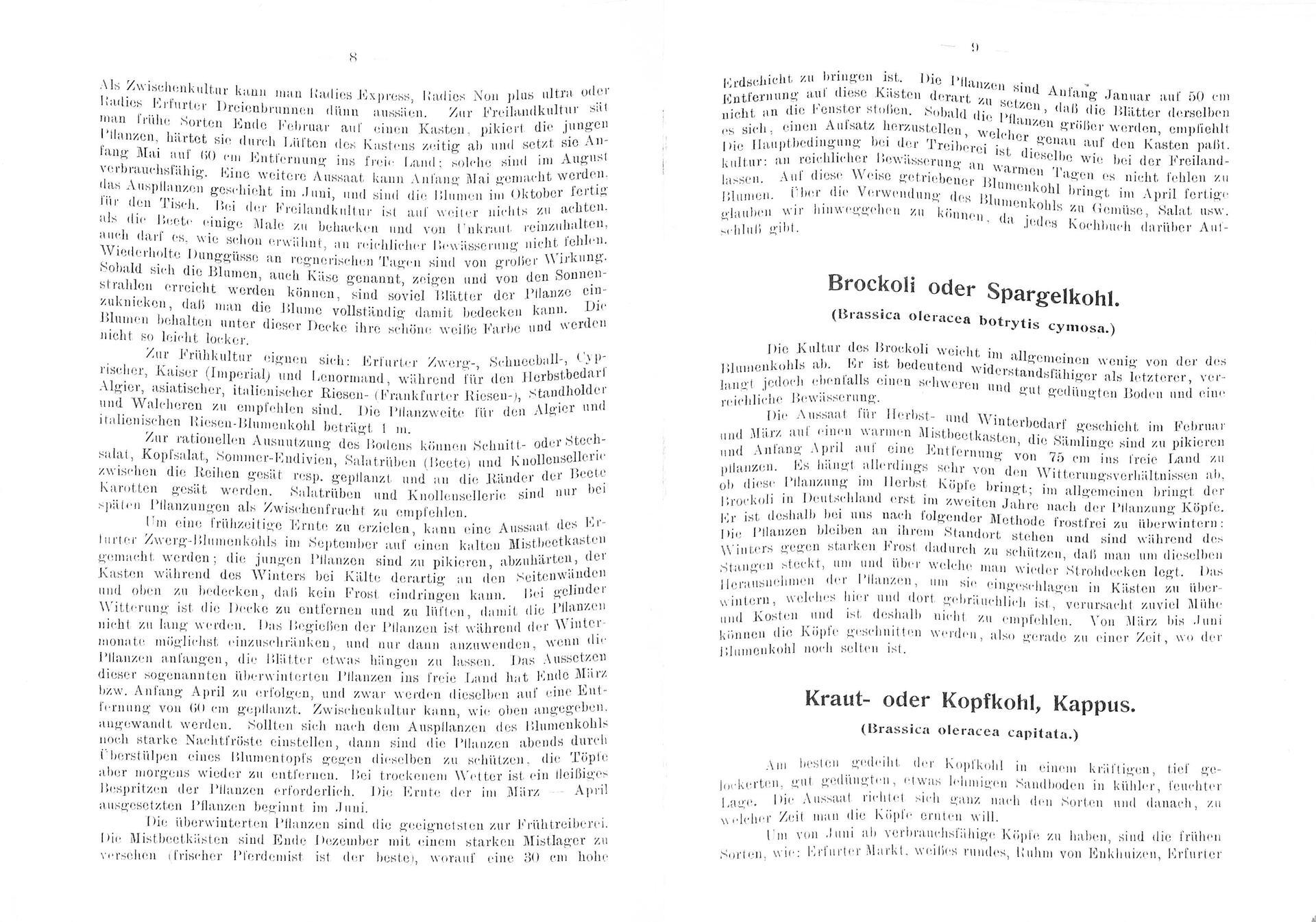 LiebauGemuesegaertner.39.8.9.jpg