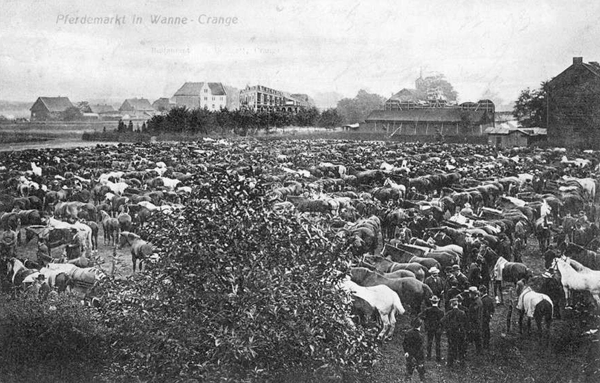 Cranger Pferdemarkt, um 1903.jpg