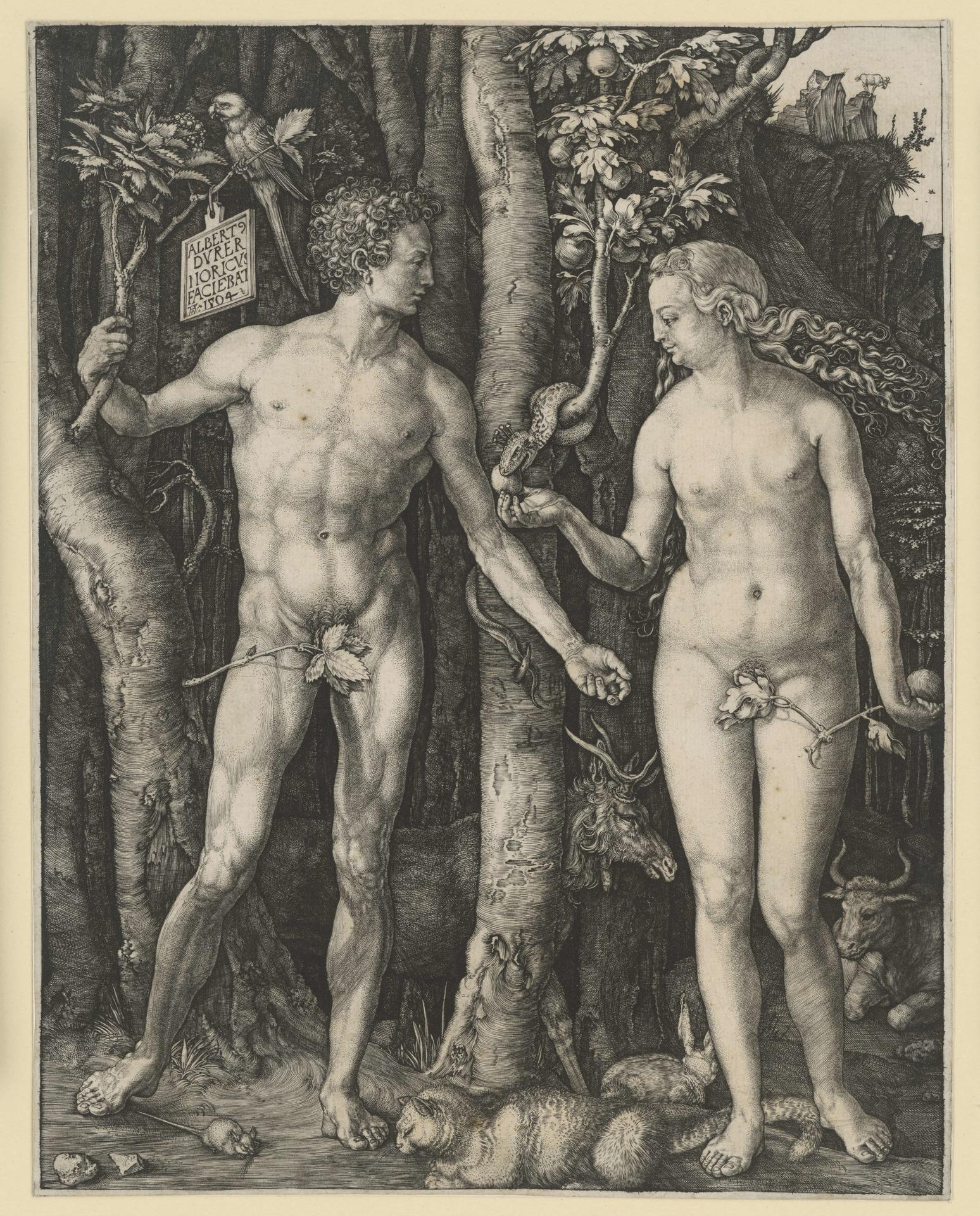Adam_und_Eva_Dürer_Adam_Eva_1036855.jpg