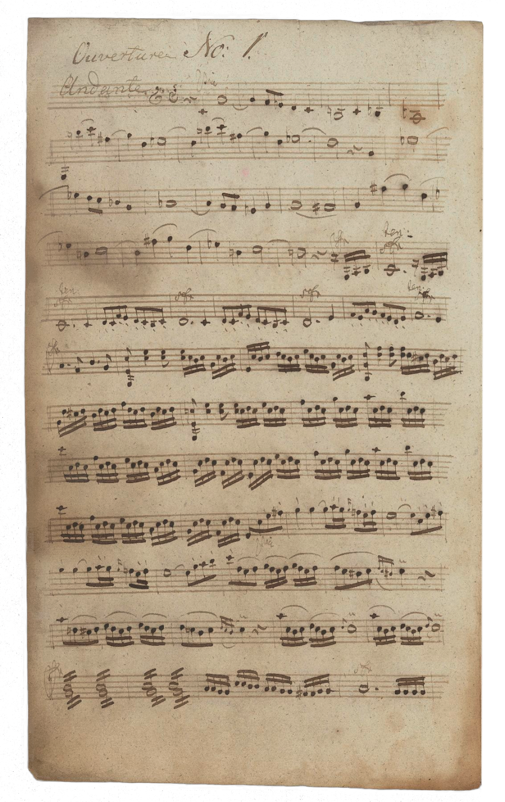 01_Violina primo_beschnitten.png