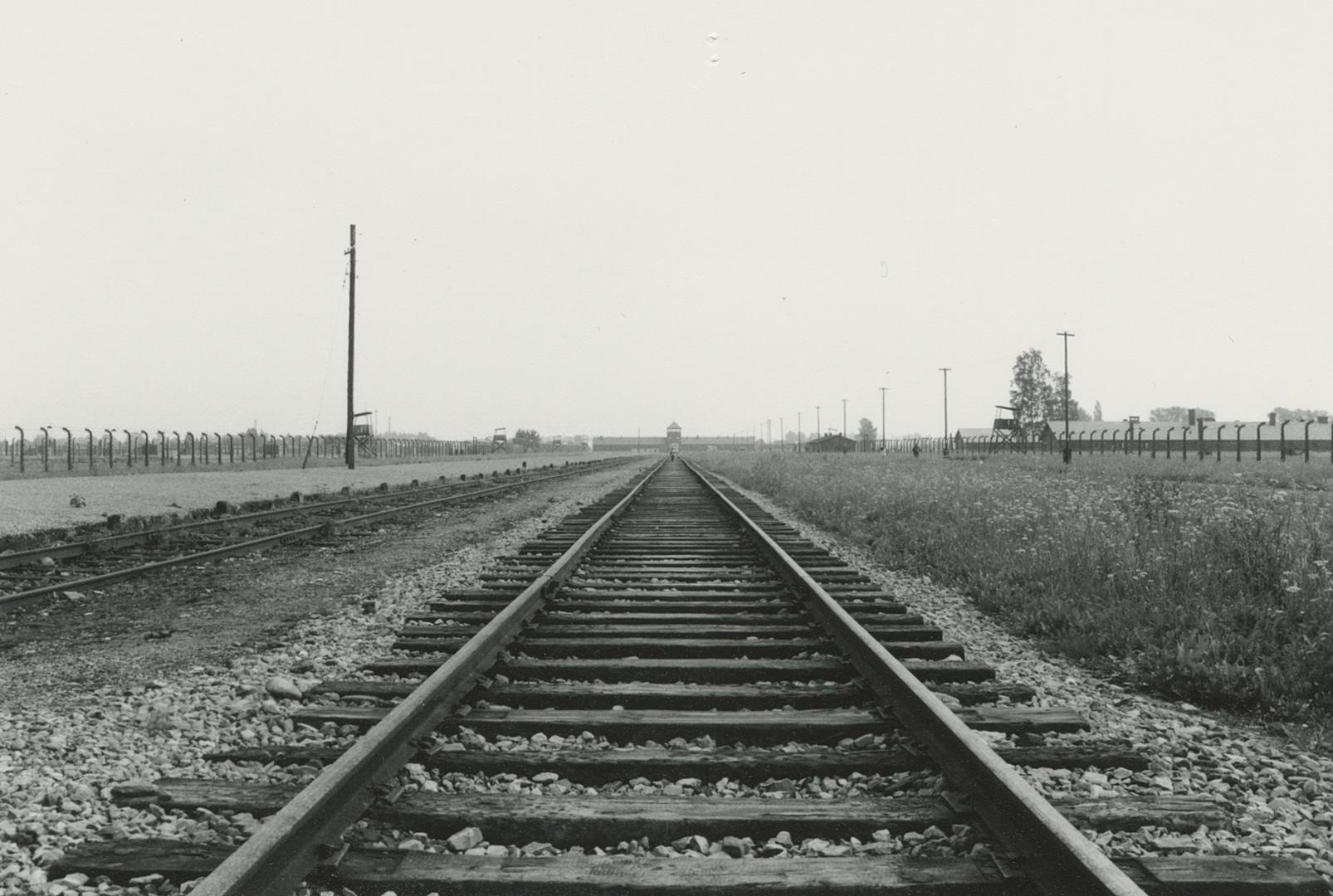 E63_462_4.jpg