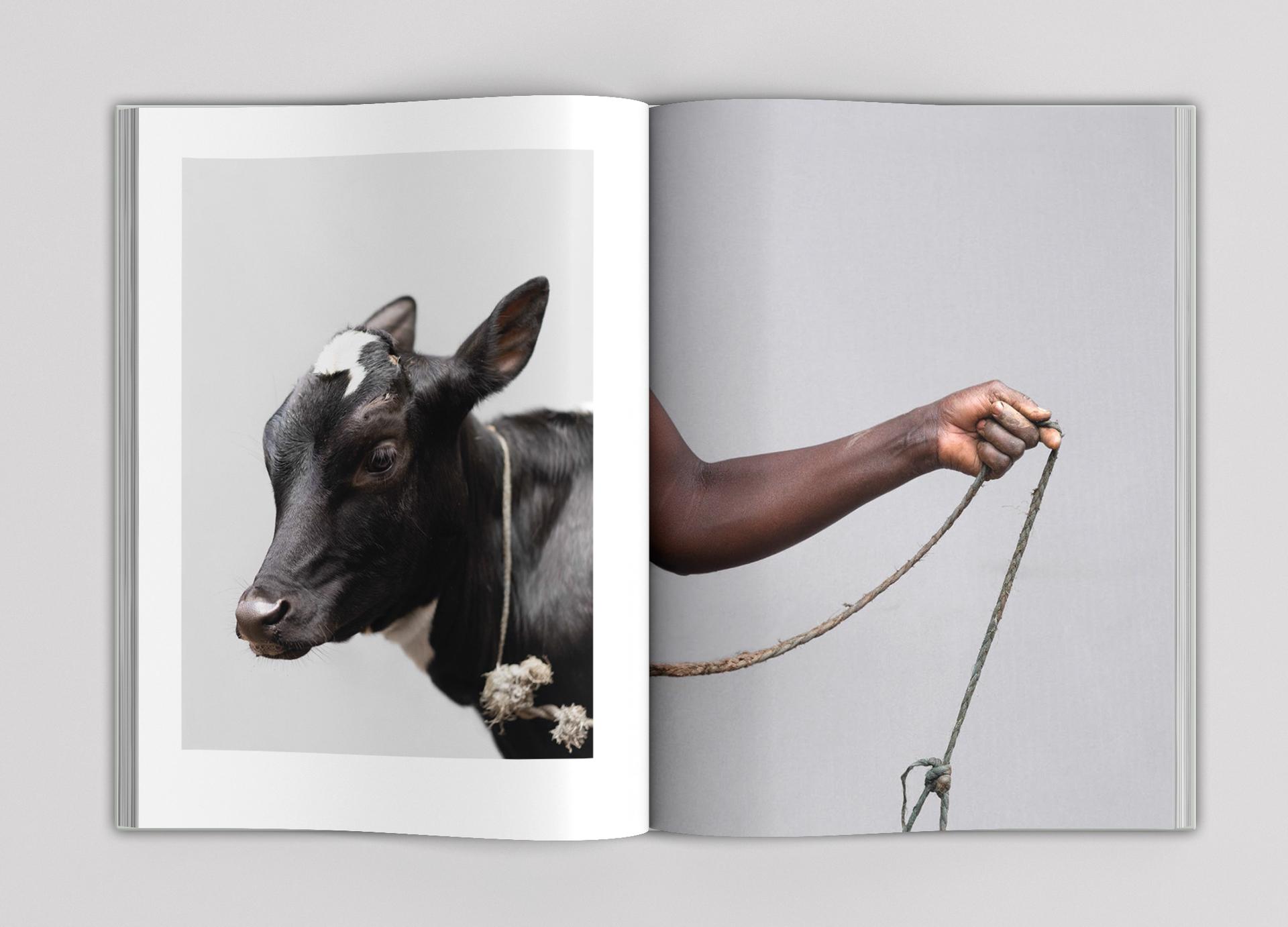 Paul Seawright Beasts of Burden p 4-5.jpg