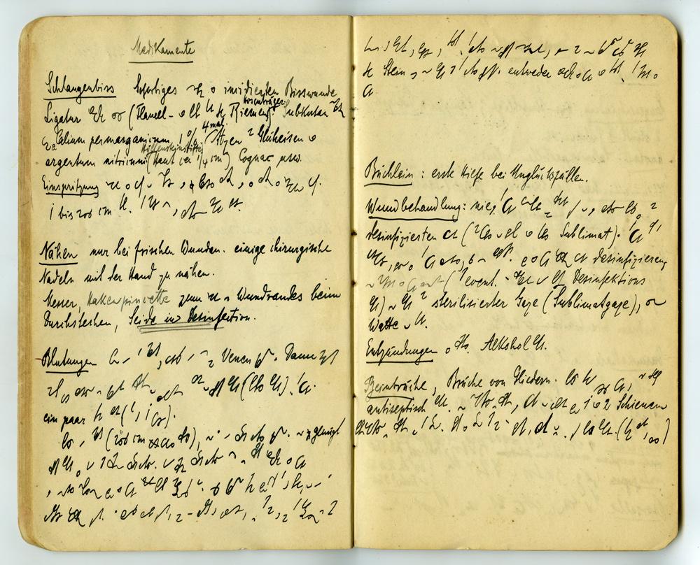 Notizbuch von Konrad Theodor Preuss, Heft 1, Seite 21