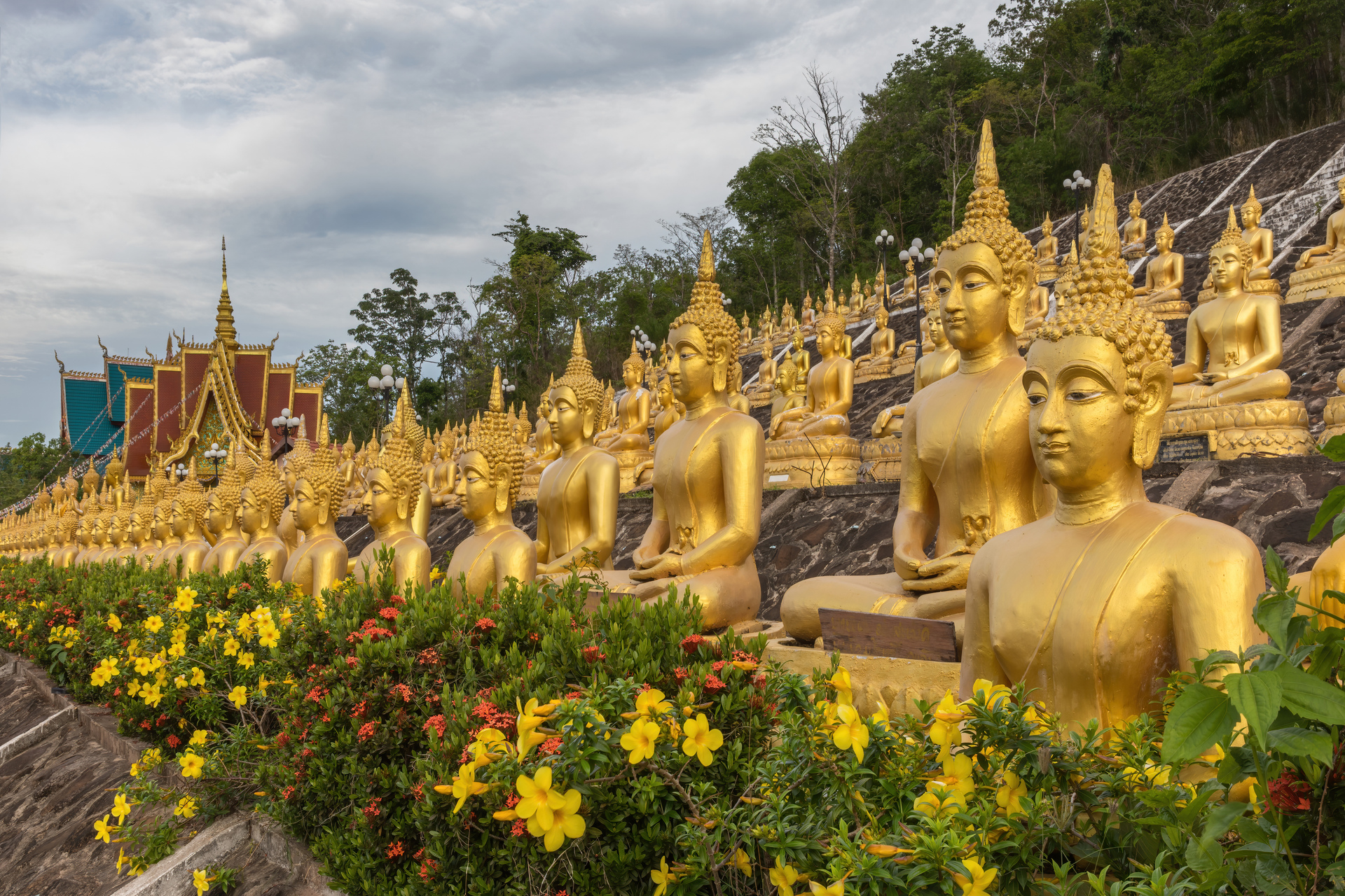 Multiple_rows_of_golden_statues_of_the_Buddha_seated_with_flowers,_at_Wat_Phou_Salao,_Pakse,_Laos.jpg